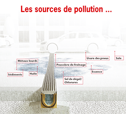 ACO_seal_in_sources_pollution